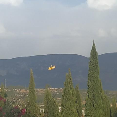 Un mitjà aeri a prop del pantà de Beniarrés