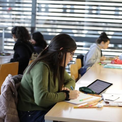 Alumnat estudiant / UPV
