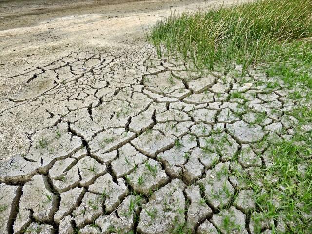 Conseqüències del canvi climàtic.