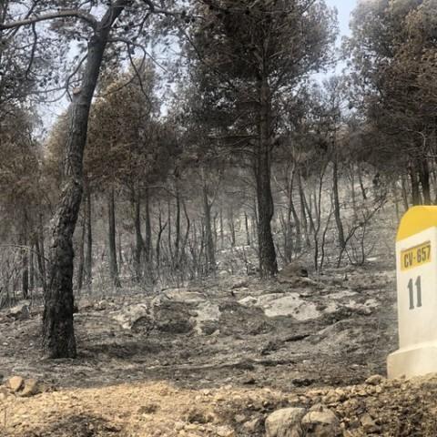 Incendi de beneixama. imatge compartida en xarxes pel diputat Toni Francés