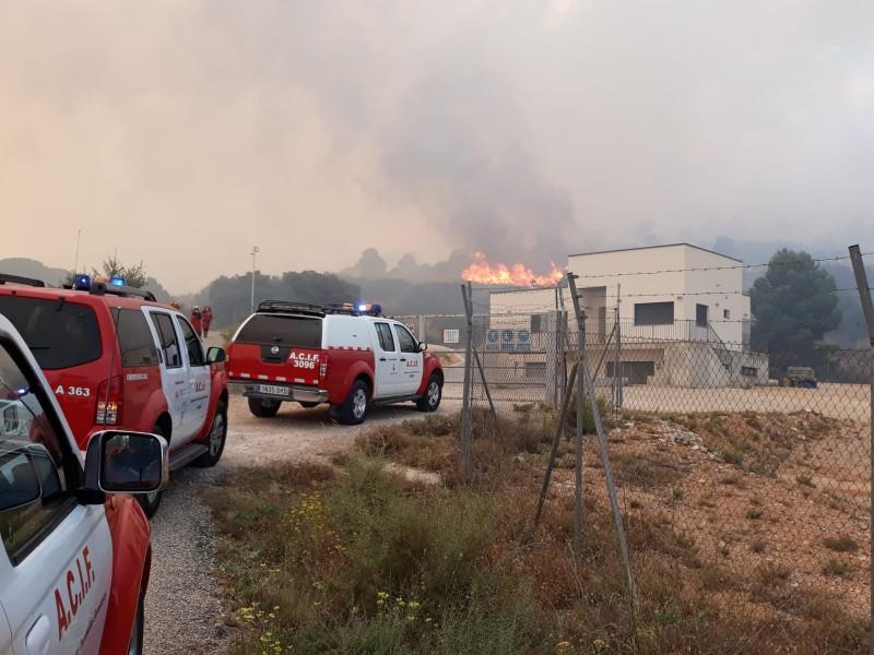 Brigades forestals de Castella la Manxa, voluntaris d'Alcoi i Salines, i l'Unitat Militar d'Emergències han participat en  els treballs d'extinció.