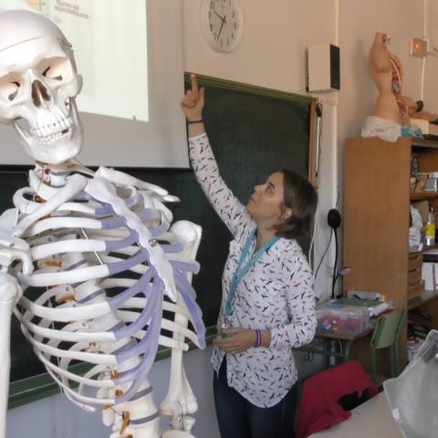 Educació plurilingüe i titulacions ambientals destaquen en l'oferta de l'IES Pare Vitòria