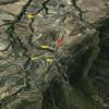 La zona de Benifalim, imatge del Google Maps. No es disposen d'imatges de l'incendi pel moment.
