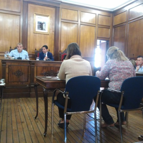 El president de l'AA.VV del Centre durant la seua intervenció en el plenari municipal.