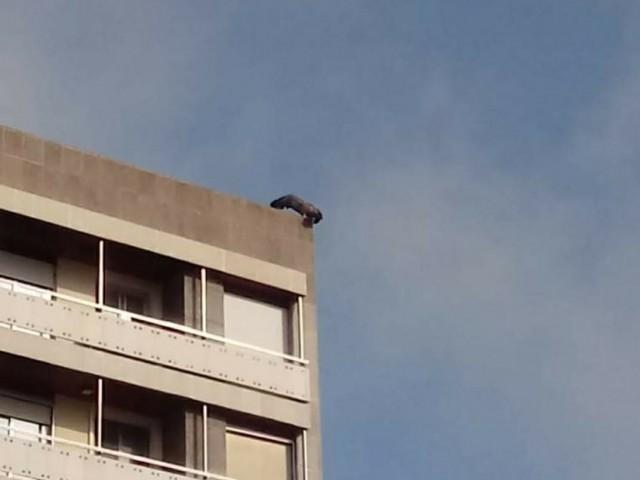 L'au al damunt de l'edifici