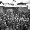 Alliberament de Mauthausen, maig de 1945. Fotografia de Cpl Donald R. Ornitz, US Army - [1], Dominio público, https://commons.wikimedia.org/w/index.php?curid=183551