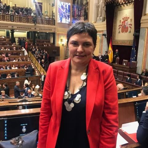 Patri Blanquer al Congrés dels Diputats