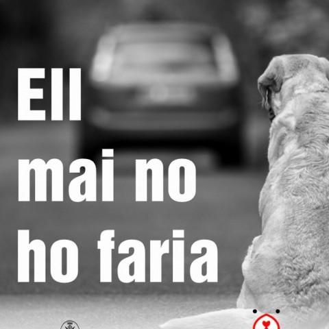 Cartell de la campanya / Imatge vía xarxes socials de l'Ajuntament d'Alcoi