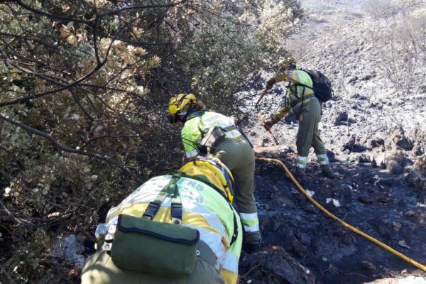 Estabilitzat l'incendi a la Vall de Gallinera. Encara es desconeixen les causes
