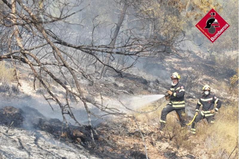 El de Monòver és el primer gran incendi d'aquest estiu a la província. Imatge del consorci provincial de Bombers