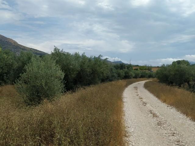 Un tram de la Via Verda, en concret entre Gaianes i Beniarrés