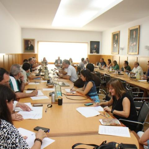 El Consell de la UA/UA