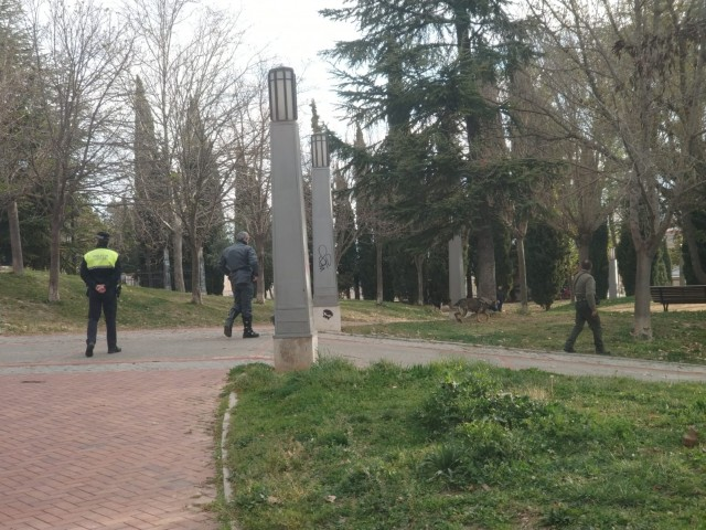 Un gos ensinistrat del Seprona busca restes de verí al parc de El Romeral.