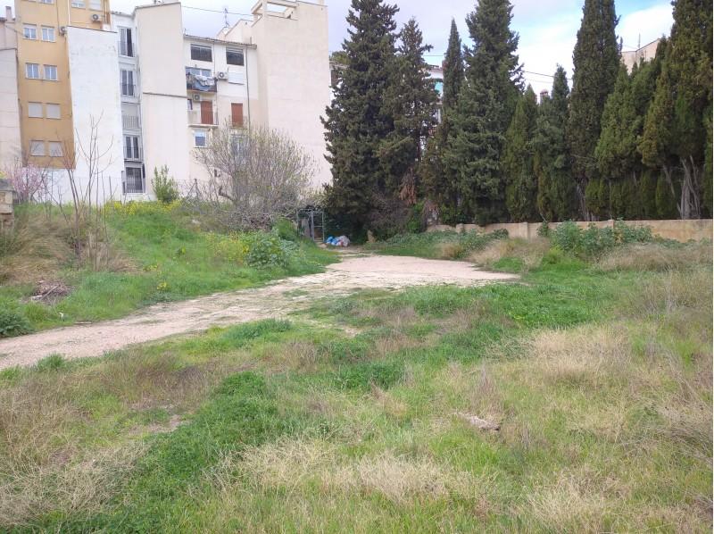 Imatge dels terrenys de la Riba / AM