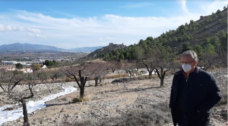 Antonio Bernabeu visitant el lloc on es construirà 'La  conillera' / Aj. Castalla