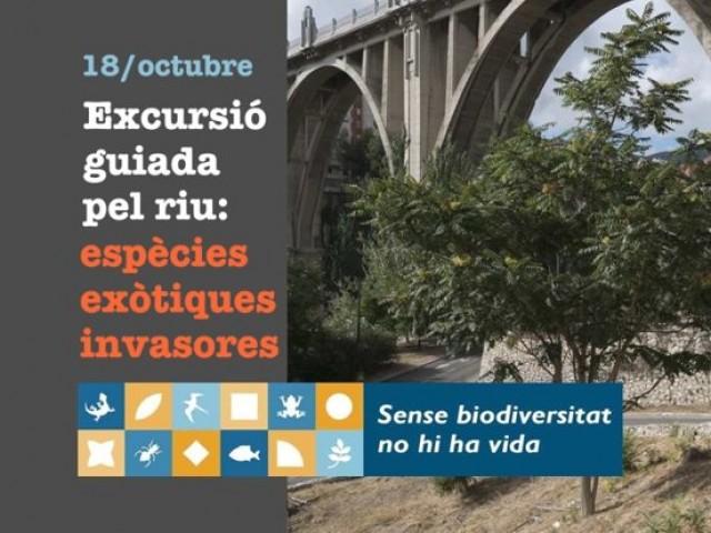 Jornada organitzada per La Carrasca / AM