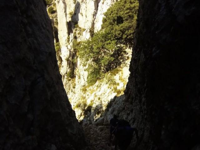 La Serella. imatge d'Alberto Cortés