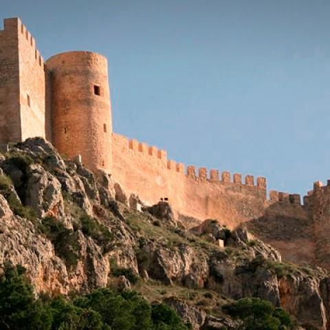 Castalla és l'únic municipi gran de les comarques que no ha incrementat la Incidència Acumulada.