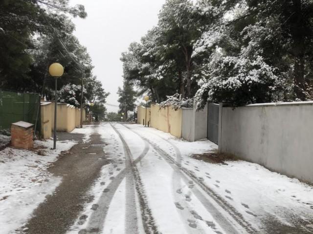 Tancats per neu els accessos als parcs naturals de les comarques