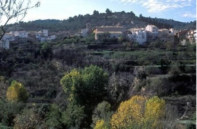 Una imatge del poble