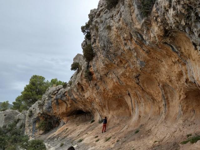 Les Pintures rupestres de La Sarga