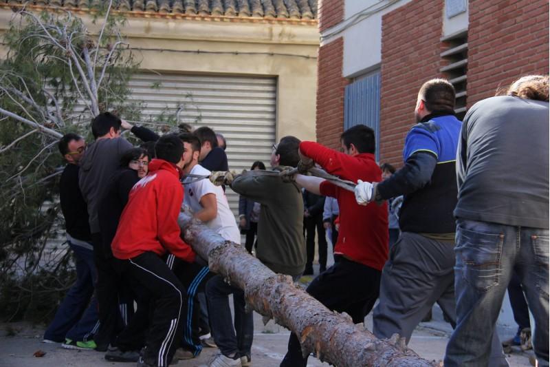 Els actes comencen amb la plantà de la foguera. | Foto: Festers Sant Antoni d'Atzeneta.