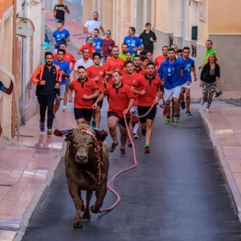 A finals de setembre es publicarà al DOGV la normativa corresponent a aquests actes taurins. | Foto: Guillermo Rico