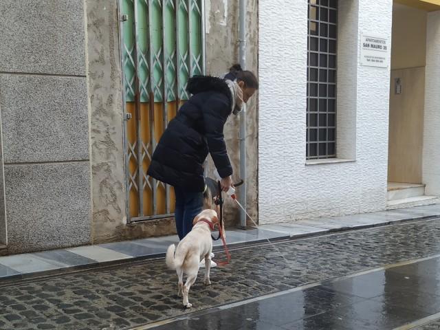 Veïna del Centre responsable neteja les deposicions del seu gos / Foto arxiu
