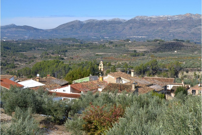 Benialfaquí/Viquipèdia
