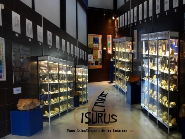 El museu Isurus s'apropa a la declaració oficial de Col·leccióMuseográficaPermanent