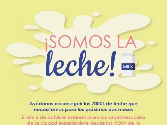S'inicia una campanya de recollida de llet a benefici de l'economat de Càritas