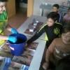 En la campanya d'educació ambiental participen 1758 escolars de centres educatius d'Alcoi / Ajuntament d'Alcoi