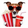 Imatge d'article promocional sobre el cinema