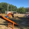 Inauguració del nou espai a la Protectora / Col.legi Sant Roc